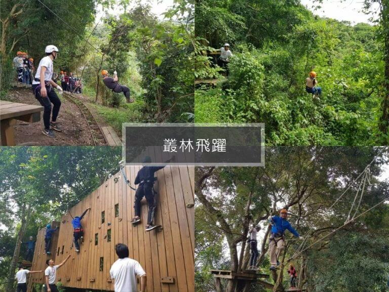 樹頂探險 叢林飛躍